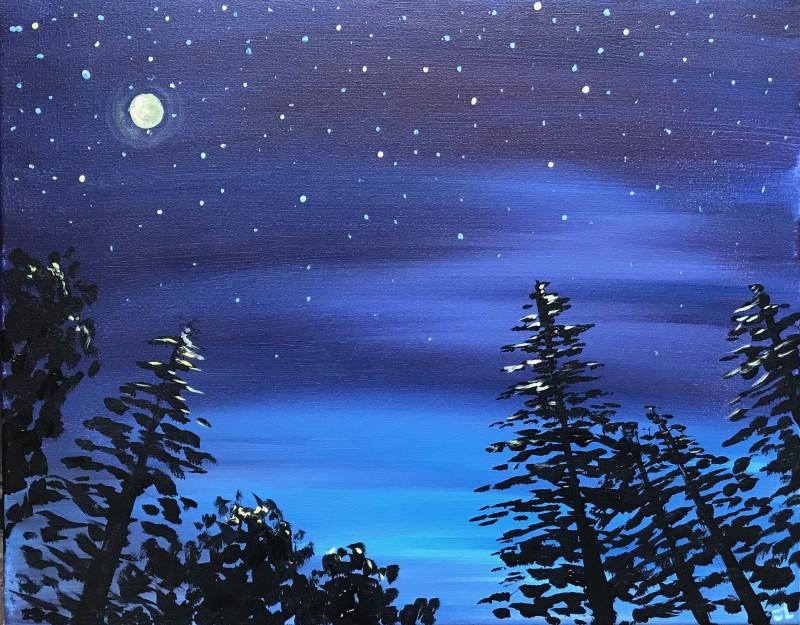 Midnight Forest