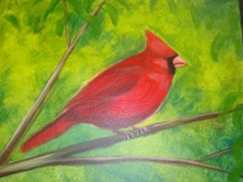 Cardinal: Kit WITH Brushes