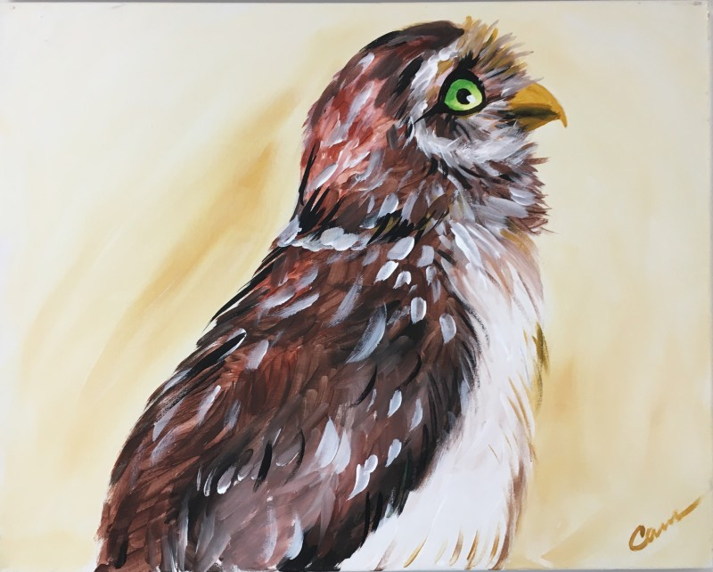 Wise Owl - In Studio Class