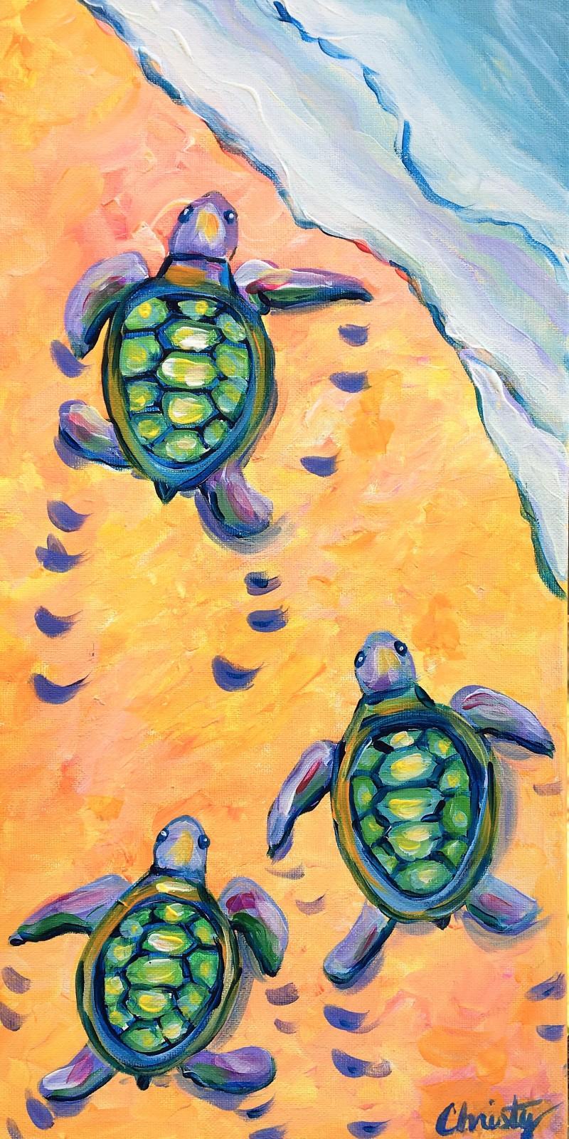 Baby Sea Turtles Virtual Class