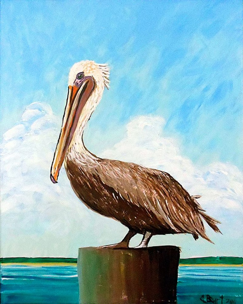 ON WHEELS @ TIDAL CREEK BREWHOUSE - Perched Pelican